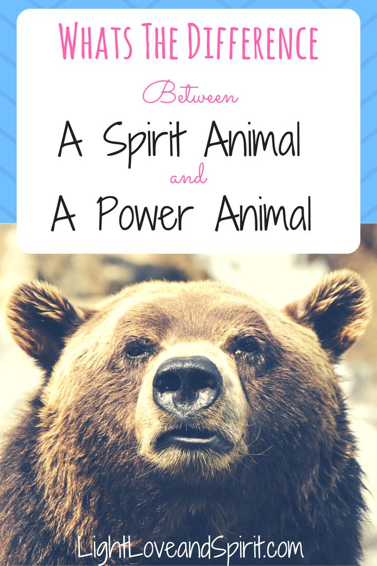 what is the difference between a spirit animal and a power animal